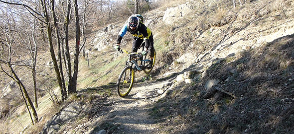 Enduro, Freeride &Downhill